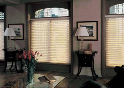 Simplicity designer shades | Home Automation